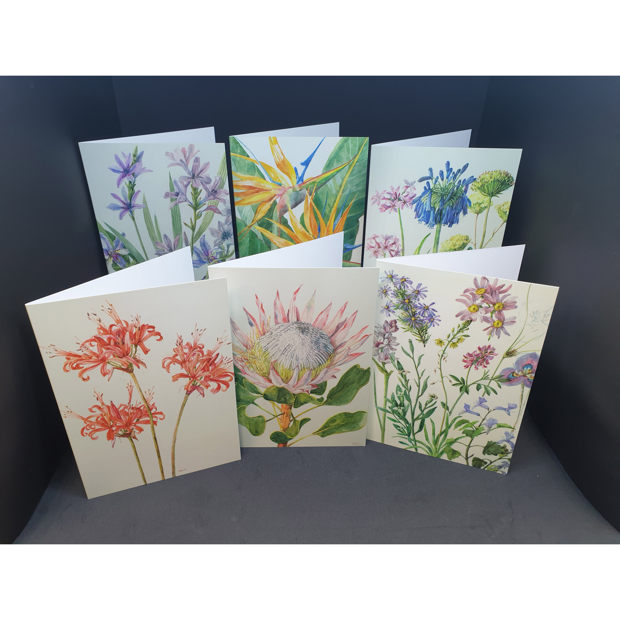 The Tait Florilegium folding notecards