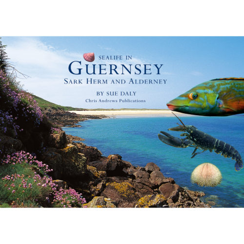 Life in the Seas of Guernsey a little souvenir - front cover