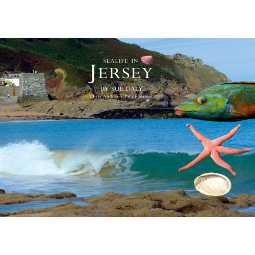 Life in the Seas of Jersey a little souvenir - front cover